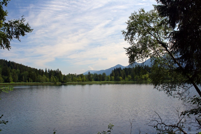 Schwansee - лебединое озеро
